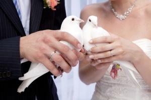 Two white  doves.Wedding