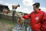 Animal Peace Duisburg