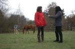 TNZ Moderator Andreas Zemke im Interview mit animal-peace Pferdefrau Nicola Welp