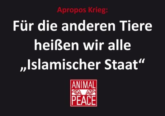 islamischer-staat