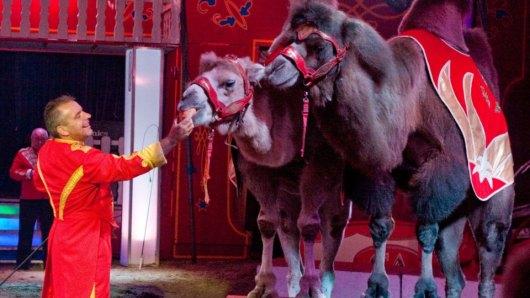 zirkus-circus-busch